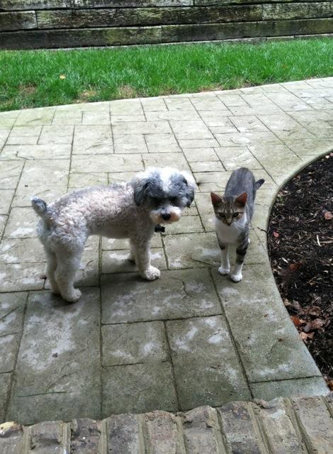 Maya and Brody